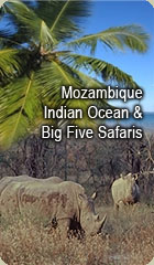 Tours and Safaris to Mozambique